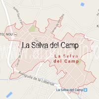 La Selva del Camp